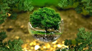「環境」関連株式投資信託の純資産総額ランキング
